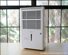 Are Dehumidifiers Good For Asthma Patients?